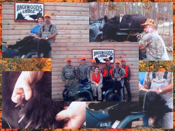 Arkansas Group Bear Hunt